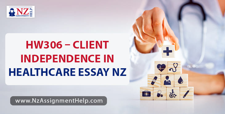 HW306 - Client Independence in Healthcare Essay Example