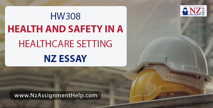 HW308 – Health And Safety In A Healthcare Setting NZ Essay