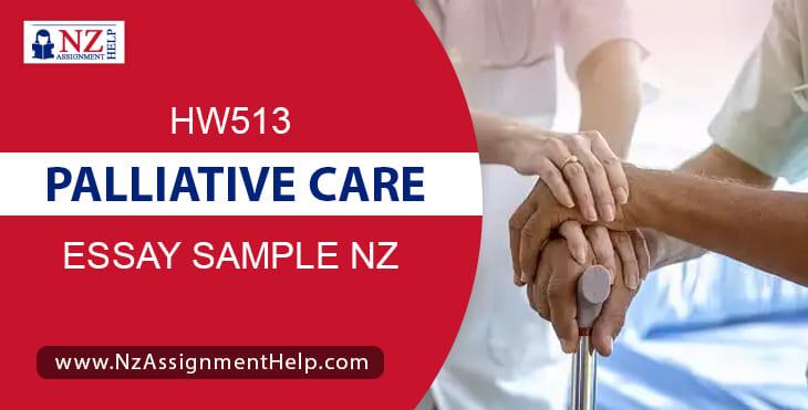 HW513 - Palliative Care Essay Sample For Nursing Students